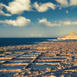 Salinas on Goso island, Malta — Stock Photo #41454023