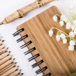 Stock Photo: Pen and notebook made from sustainable bamboo