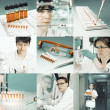 Scientists at work, collage — Stock Photo #41454337