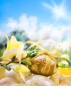 Easter egg on spring background — Foto Stock