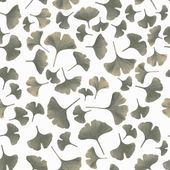 Tinted gingko leaves — Stock Photo