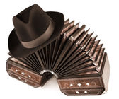 Argentine tango - bandoneon and a hat — Stock Photo