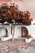 Tree in bloom by summer house, tinted image — Stock Photo