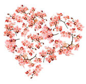 Heart made from Phalaenopsis orchids — Stock Photo