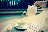 Green tea outdoors, tinted image — Stock Photo