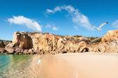 Golden beaches of Albufeira, Portugal — Zdjęcie stockowe