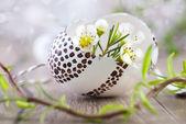 Witte bloemen en paasei — Stockfoto