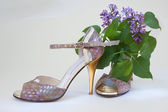 Tango stilettos and lilac flower — Stock Photo