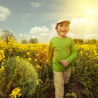 Boy on rapeseed field, tinted image — Stock Photo