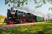 Historical German steam train in spring — Foto de Stock