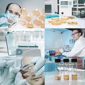 Работники микробиологов в лаборатории — Стоковое фото