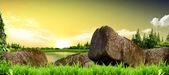Harika bir manzara doğa arka plan — Stok fotoğraf