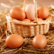 Free range eggs in hen house — Stock Photo