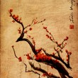 Sakura, cherry blossom plum chinese brush painting — Stok Fotoğraf #33009043