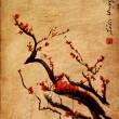Sakura, cherry blossom plommon kinesiska pensel målning — Stockfoto