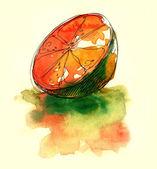 Juicy orange water color painting — Stock Photo