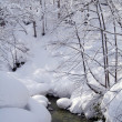 River with white snow — Foto Stock
