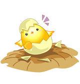 Cartoon new born baby chicken egg — Stock Vector
