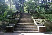 Steinerne Treppe zum alten buddhistischen Tempel — Stockfoto
