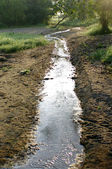 Small natural water canal — Photo
