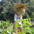Scarecrow, straw man at the farm — Stock Photo #39956313