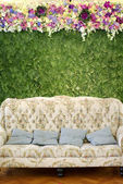 Classic sofa with flower — Stock Photo