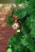 Red and gold ornament on pine tree — Stock Photo