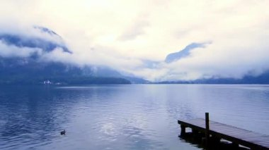 Beautiful calm cloudy lake with small port and duck — Vídeo de stock