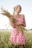 Young woman in corn field — Stock Photo