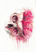 The watercolor space skull — Stock Photo