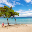 View of Vurvuru beach in Halkidiki, Greece — Stock Photo