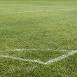 Football (soccer) field corner with white marks — Photo