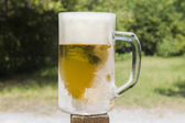 Cold beer in a chilled mug — Stock Photo
