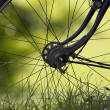 Part of cycling wheel — Stock Photo