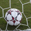 Football ball in the net — Stock Photo