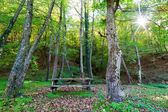 Wooden Picnic table in autumn forest among the fallen leaves — Stock Photo
