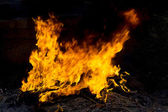 Red Fire and Flames Background — Stock Photo