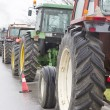 Protest by farmers with their tractors  — Stock Photo #41262683