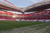 Лига Европы Уефа Бенфика sl против Паок Салоники — Стоковое фото