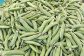 Close up of fresh sugar snap peas — Stock Photo
