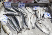 Fresh fishes in a market with greek names and prices — Stock Photo