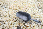 Salted popcorn and scoop — Stock Photo