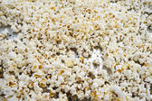 Salted popcorn grains ready to eat — Stok fotoğraf