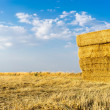 Piled hay bales on a field against blue sky with clouds. — Stock Photo #49659321