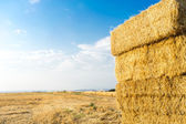Piled hay bales on a field against blue sky with clouds. — Stock Photo