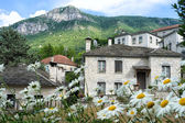 The picturesque village of Aristi in Zagori area, northern Greec — Stok fotoğraf
