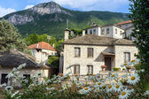 The picturesque village of Aristi in Zagori area, northern Greec — Foto de Stock