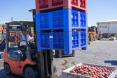 A worker transporting boxes with fruits of Agricultural Cooperat — Stock Photo