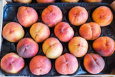 Freshly harvested peaches in a crate — Stock Photo