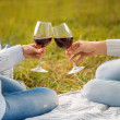 Stock Photo: Clinking glases with wine on picnic